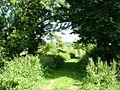 Westholme Lane - geograph.org.uk - 226224.jpg