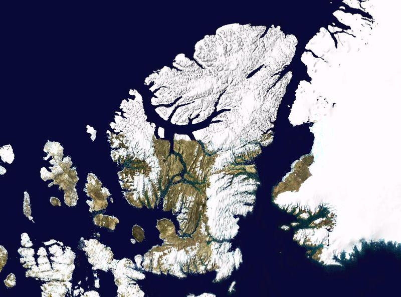 Wfm ellesmere island.jpg
