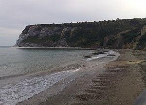 Whitecliff Bay - Whitecliff Bay