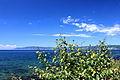 Widok z Listwianki na jezioro Bajkał 01.JPG