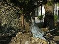 Wien 16 - Franz von Assisi-Denkmal - VII.jpg