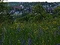Wiese auf dem Goldberg in Sindelfingen - geo.hlipp.de - 10702.jpg