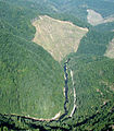 Williams River, tributary to South Fork Coos River.jpg