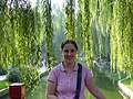 Willows, near TianAnMen Square (2915221276).jpg