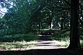 Wingate Park - geograph.org.uk - 40901.jpg