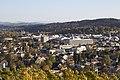 Wolfesberg - panoramio (8).jpg