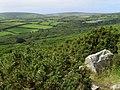 Wooded valley east of Trengwainton Carn - geograph.org.uk - 943123.jpg
