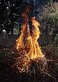 Wraxall 2013 MMB 54 Bonfire.jpg