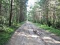 Yaroslavsky District, Yaroslavl Oblast, Russia - panoramio (100).jpg