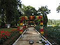 Yercaud 44th Flowershow-17-yercaud-salem-India.jpg