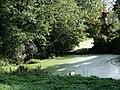 Zabłudów park dworski 1.JPG