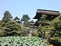 Zenkouji-houjyouike.JPG