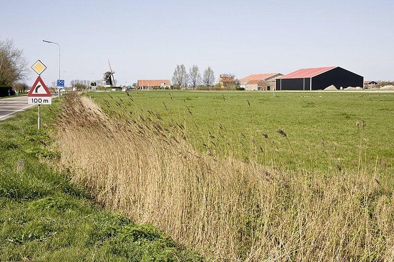 """File:Zicht op cultuurlandschap langs de Kadetweg, in de verte molen """"De Hoop"""" - Serooskerke - 20427194 - RCE.jpg"""
