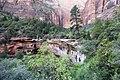 Zion National Park (15317314555).jpg