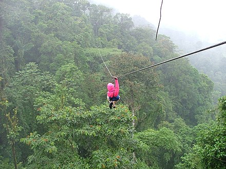 Zip line in the cloud forest near Arenal Volcano Zip-line over rainforest canopy 4 January 2005, Costa Rica.jpg