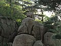 """大兽驮小兽""(西海大峡谷) - A Odd-Looking ""Mammal"" Carrying a Smaller One on Its Back(West Sea Canyon) - 2010.05 - panoramio.jpg"