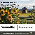 """Wam-iliʔi"" is the Chinuk Wawa word for ""summertime."" It is pronounced ""WAHM ILL-uh-ee."" ʔ is the symbol for a glottal stop, a (bc04cfb4-ba94-44d1-b1a9-ec1e0dfac9a6).jpg"