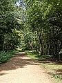 'Main Path' bridleway at High Beach, Epping Forest, Essex England 1.jpg