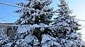 Érd Parkváros Winter1 - panoramio.jpg