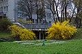 Ботанічний сад Хмельницького національного університету по вулиці Інститутській. Фото 3.jpg