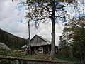 В селі Черник.JPG