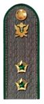 Государственный советник РФ 2 класса ФСПП.png