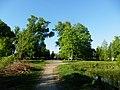 Графський парк (парк Ніжинського педінституту), Ніжинський район, м. Ніжин 74-104-5004 20.JPG