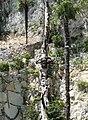 Новый Афон. Скульптура около храма Симона Кананита - panoramio (1).jpg