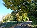 "Осень в парке (парк ""Швейцария"").jpg"
