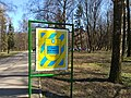 Парк ім. Чекмана, Хмельницький, весна 2019. Фото 2.jpg