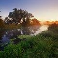 Річка Вовча. Ранковий туман.jpg