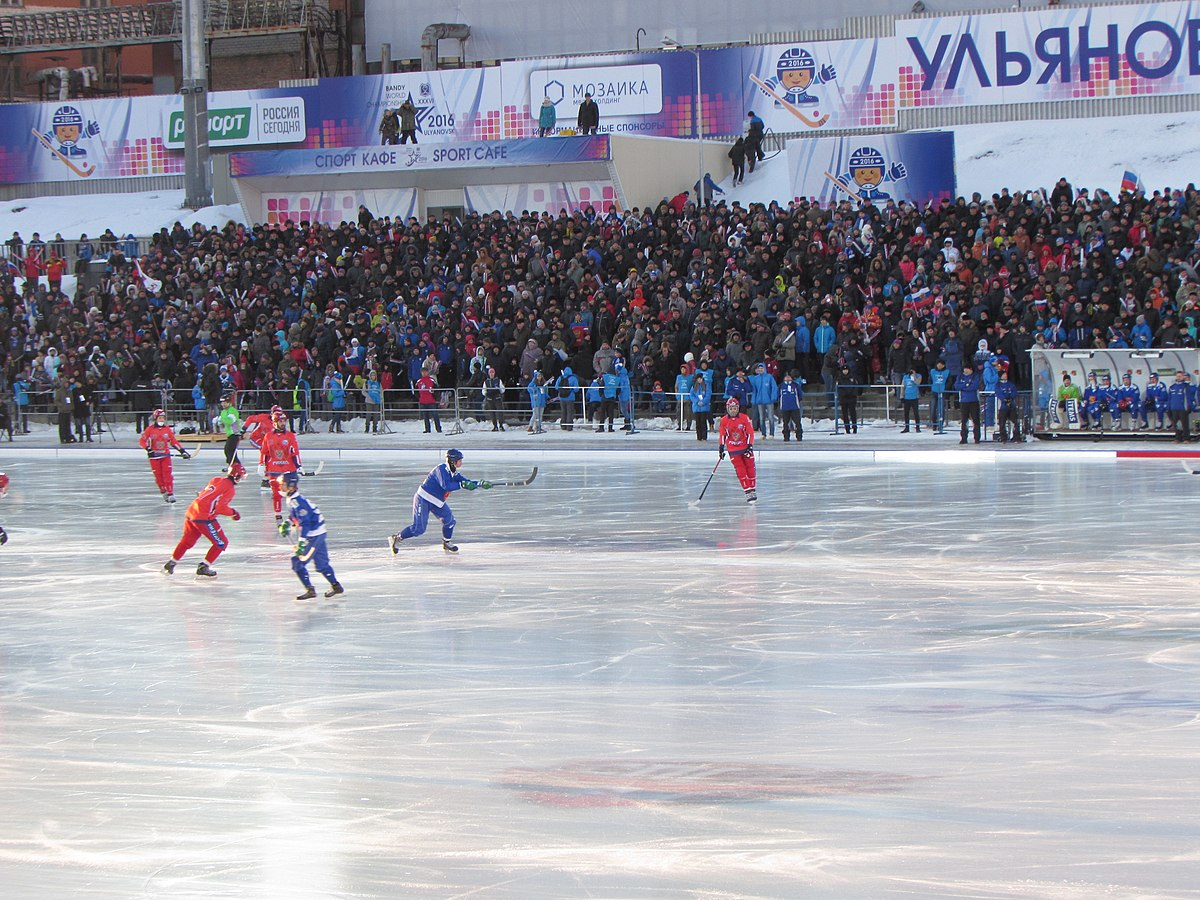 popular sports in russia By far the biggest winter sport in the world and although it is popular or played in specific countries like canada, russia, usa, scandinavian countries like (denmark, finland, norway, sweden) some easter european countries like poland, slovakia, czech republic it can still boost huge popularity specially during the world championships and .