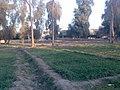 متنزه السويس.jpg