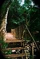 สะพานไม้แห่งบ่อเกลือ.JPG