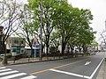 名古屋市熱田区花表町 - panoramio.jpg