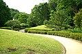 東高根森林公園 - panoramio (28).jpg