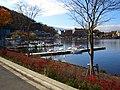 河口湖 - panoramio.jpg