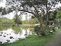 湖边 - panoramio (2).jpg