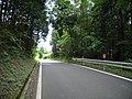 県道184号線 - panoramio.jpg