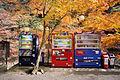 紅葉と飲料自販機 (5472516800).jpg