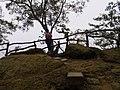 風動石公園 Fengdongshi Park - panoramio.jpg