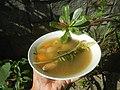 0526Cuisine food in Baliuag Bulacan Province 29.jpg