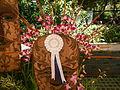 05441jfMidyear Philippine Orchid Show Quezon Memorial Circlefvf 05.JPG