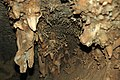 102 Helictites & stalactites 7 (8317615002).jpg