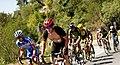 10 Etapa-Vuelta a Colombia 2018-Ciclistas en el Peloton 9.jpg