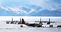139th Airlift Squadron - Operation Deep Freeze LC-130s.jpg