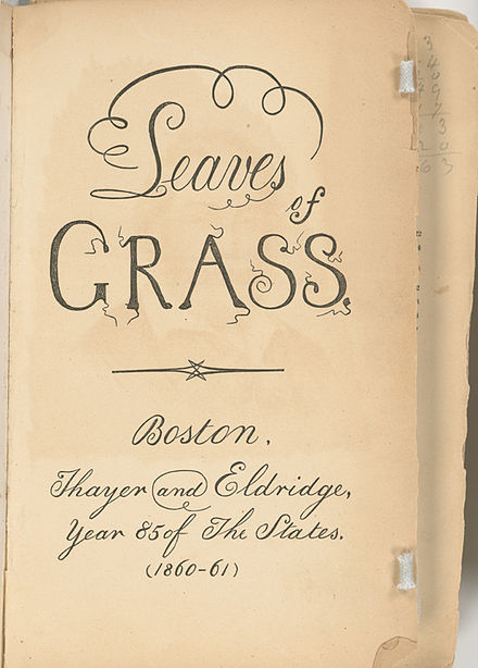 an overview of walt whitmans leaves of grass poem out of the cradle endlessly rocking Walt whitman from leaves of grass: sea drift part 1: out of the cradle endlessly rocking.