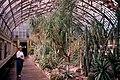 19970615 03 Garfield Park Conservatory.jpg