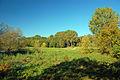 2010-10-10-oderpruch-pl-by-RalfR-26.jpg