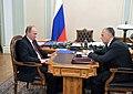 2011-10-28 Владимир Путин, Александр Хорошавин (2).jpeg